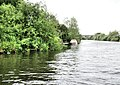 River Severn, Uckinghall - geograph.org.uk - 1349341.jpg