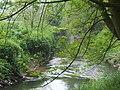 River Stour behind Kinver High Street - geograph.org.uk - 800638.jpg
