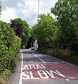 Road at Penrhiw-Llan - geograph.org.uk - 1344747.jpg