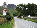 Road near Distillery, Arran - geograph.org.uk - 557201.jpg