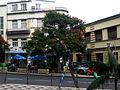 Rua Brigadeiro Oudinot e Mercado dos Lavradores - Mar 2009.jpg