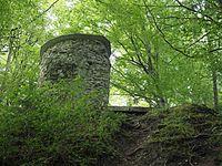 Ruine Wartenstein Turmruine von unten.jpg