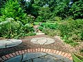 Rutgers Gardens photos of plants and foliage 22.jpg