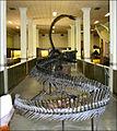 SDSMT museum, Rapid City.jpg