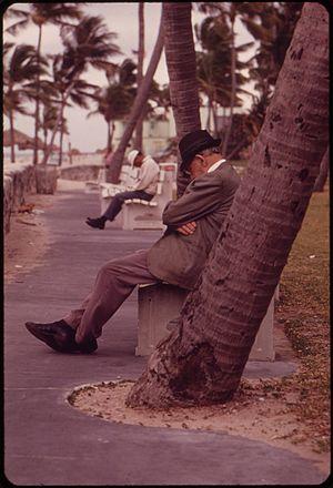 SIESTA AT SOUTH BEACH - NARA - 548645