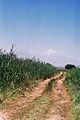 Sadarak Landscape 2.jpg