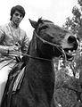 Sajid Kahn 1969 2.JPG