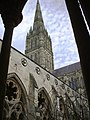 Salisbury Cathedral - geograph.org.uk - 333208.jpg