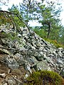 Sandbukta-Ersvika 180720087064.jpg
