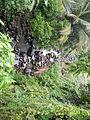 Sariaya,Quezonjf9733 10.JPG