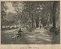 Saski ogród w Warszawie - Aleja owocowa (60536).jpg
