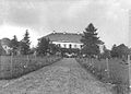Saviczy palac - aleja - 1914 AD.jpg