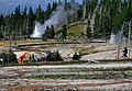 Sawmill and Grand geysers erupting in Yellowstone NP.jpg