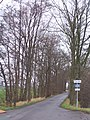 Schipluiden - eigen weg - panoramio.jpg