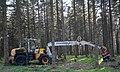 Schlägerung und Waldwirtschaft mit Hilfe von Hightec Maschinen.jpg