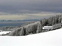 Schwarzwaldschnee.jpg