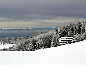 Black Forest - Winter on the Schauinsland. In the background are the Vosges