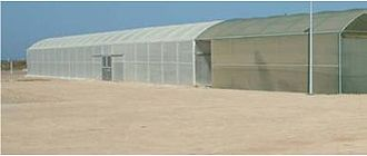 Seawater greenhouse - Figure 3. The surrounding area from the front of the greenhouse