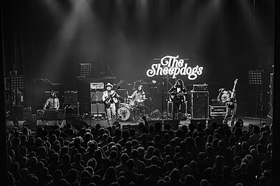 Picture of a band or musician: The Sheepdogs