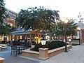 Short Pump Town Center at dusk - 8.jpg