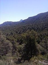 Sierra De La Pila.jpg
