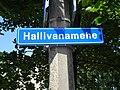 Signboard-Hallivanamehe Street-Tallinn-July-2019.jpg