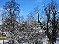Silver Spring Snow 02.jpg