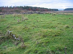 The site of Milecastle 30 at Limestone Corner