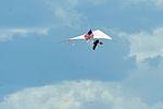 SkyFest 2014 140601-F-OG799-014.jpg