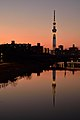 Skytree Sunset (142072183).jpeg