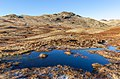 Small bog near Cold Pike, Lake District, England.jpg