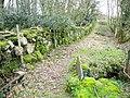 Small footbridge by Ty'n Rhos Covert - geograph.org.uk - 361208.jpg