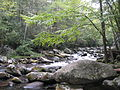 Smokey Mountains.Fluss.JPG