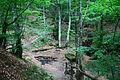 Smolarski vodopad 35.JPG