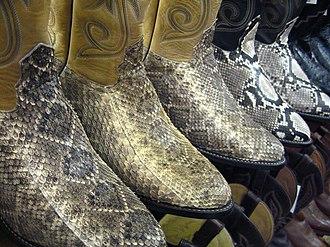 Snakeskin - Image: Snakeskin Boots 1 gobeirne