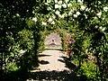 Sofiero, rosenträdgården 2008-07-01.jpg