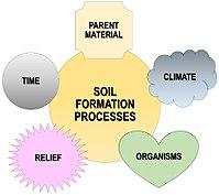Soil-formation-factors-en.jpg