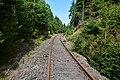 Sonneberg–Probstzella, Strecke bei Lichte 319.jpg