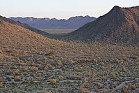 Sonoran Desert NM (9406659460).jpg