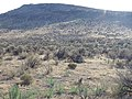 South of Marsing sagebrush steppe (Somer Camp Road) (9674223427).jpg