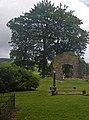 Southern fringe of Saddell Abbey graveyard - geograph.org.uk - 1449885.jpg