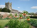 St Peter's Church Coughton from the Walled Garden - geograph.org.uk - 466705.jpg