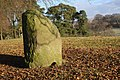 Standing stone at Skip - geograph.org.uk - 1110142.jpg