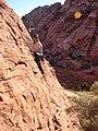 Starr-071222-0268-Andropogon glomeratus-habitat with Kim climbing-Cow Lick Crag Calico Basin-Nevada (31144967270).jpg