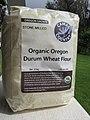 Starr-170215-6912-Triticum durum-durum wheat flour-Hawea Pl Olinda-Maui (33380861245).jpg