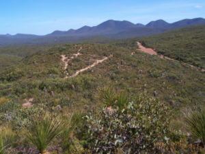 Stirling Range - Heath habitat looking west from lookout in approx centre of ranges