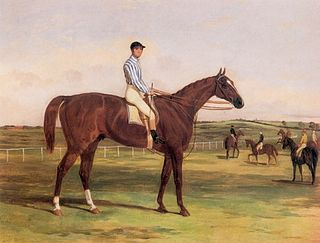 Stockwell (horse) British-bred Thoroughbred racehorse