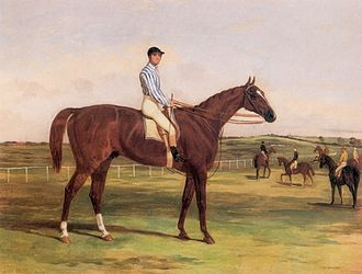 Stockwell (horse) - Image: Stockwell with Jockey Up