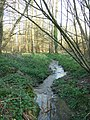 Stream at Lowden's Copse - geograph.org.uk - 388370.jpg