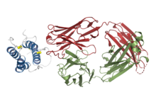 Structural basis for inhibition of TSLP-signaling by Tezepelumab.png
